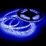 Tira Leds 3528 5mts 120led/m Azul Decoracion