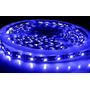 Tira Leds 3528 5mts 30led/m Color Azul Siliconad Exterior