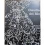 Cien Imágenes Huérfanas - Claudia De Río - Catálogo - 2000.