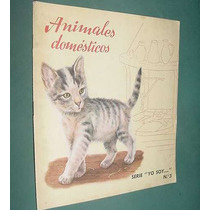 Libro Cuento Infantil - Animales Domesticos - Roma 1962