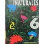 Libreriaweb Ciencias Naturales 6 Sexto Año Estrada