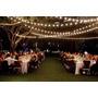 Tira De Luz Led Calida 8,5mts + 100 Pelotitas Kermesse Bodas