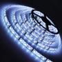 Luz Cinta Led 5 Metros+fuente- Bco Frio, Calido, Azul,rojo