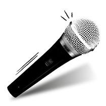 Micrófono Shure Pg48 Mic Vocal Cantantes En Z/sur Avellaneda