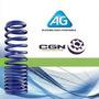 Resortes Espirales Ag Vw Gol Ab9 Trasero Gnc Ref (251023r)