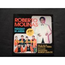 Roberto Molinas*paraguay Mi Jardin* Original Nuevo