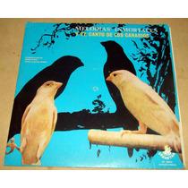 Melodias Inmortales Y El Canto De Los Canarios Lp Argentino