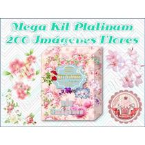 200 Imágenes Flores Decoupage Scrapbook Diseño Láminas 2x1