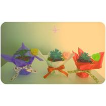 Souvenirs Cactus Y Suculentas Personalizados Para Evento