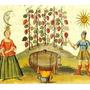 Lote 2 De 5 Libros De Alquimia -en Fomato Pdf/doc (digital)