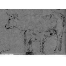 Nº 104 - Maternidad - Dibujo Del Artista Luis Cordiviola