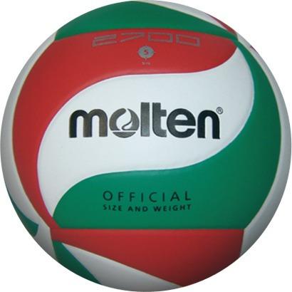Pelota europea de voleibol playa