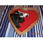 Hembras Bulldog Frances Con Pedigree De Fca