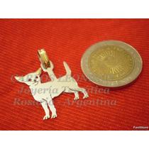 Chihuahua - Dije Plata 925 - Oro 18k