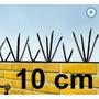 Pinches Seguridad Perimetral Gatos Palomas 48 Puntas X Metro