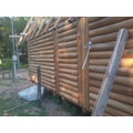 Cabaña Machimbre Cabañero 1x5 Eucaliptus Grandis