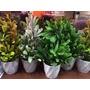 Plantas Artificiales-maceta Con Hojas Largas-20cm
