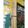 Cañas De Bambu Secas X 3 Cañas