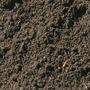 St Lombricompuesto Humus De Lombriz Californiana Organico