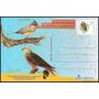Argentina 1996 Gj Tp 019 Mint Aves Pájaros A B R A F E X