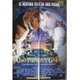 Afiche Original De Cine - Como Perros Y Gatos - 2001