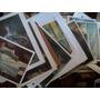 Lote De 290 Laminas Posters Grabados Pinturas Animales