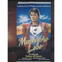 Muchacho Lobo 3083 Michael Fox Afiche De 1.10 X 0.75