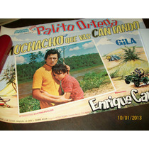 Afiche Pelicula Muchacho Que Vas Cantando Palito Ortega