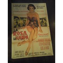 Afiche Original La Diosa Del Hampa Syd Charise