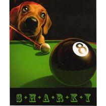 Poster De Un Perro Jugando Al Pool - Sharky - 20 X 25 Cm