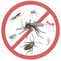 Derribante Total Veneno 5lts + Pulverizador , Mata El Dengue