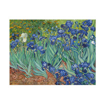 Lamina - Lirios ( Irises ) 1889 - Van Gogh - 50 X 40 Cm.