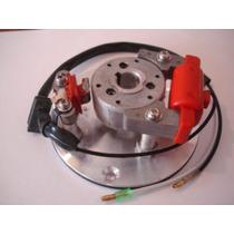 Encendido De Competicion Para Motos 110cc (rotor Interno)