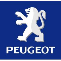Amortiguador Porton Trasero Peugeot 206