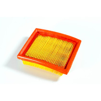 Filtro Aire / Elemento Filtrante Skua 150 Motomel
