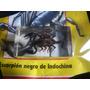 Escorpion Negro. Coleccion Insectos. Nuevo