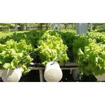 Nutrientes Hidroponia Fertilizante Comp.rinde 10.000l Menvío