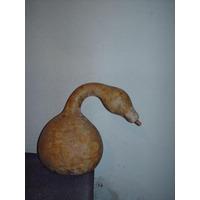 5 Semillas Sembrar Calabaza Cisne Decorativa +instructivo