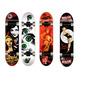 Skates Moolahh Profesionales Doble Cola Maple 7 Capas Envios