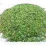 Moringa Oleifera Orgánica Produccion Familiar Por 100 Grs