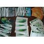 Lote Postal Ideal Revendedores Camel Heineken Fanta