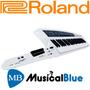 Sintetizador Colgable Autosuficiente Roland Ax-synth