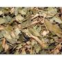 Pitanga Deshidratada 1 Kilo Hierbas Medicinales