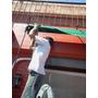 Instalador De Toldos Para Patios Balcones Terrazas Cocheras