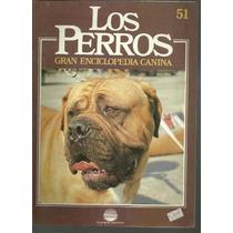 Enciclopedia Canina Perro Pastor Montaña De Pirineos Dogo 51