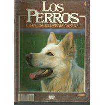 Enciclopedia Canina Perro Pastor Aleman Trabajo Entrenamie 4