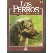 Enciclopedia Canina Perro Pastor Eslovaco Charplaninatz 21