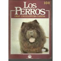Enciclopedia Canina Perro Terrier Ingles Schipperke 108