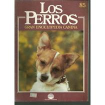 Enciclopedia Canina Perrodrever Strelluf Stover Sabuesos 85