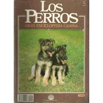 Enciclopedia Canina Perro Pastor Aleman Trabajo Entrenamie 5